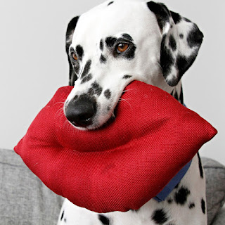 Dalmatian dog with giant red lip kiss stuffed toy in his mouth