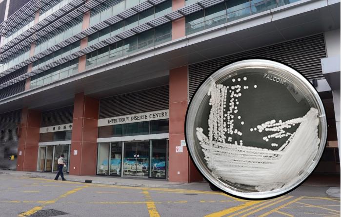 5 Kasus Baru Infeksi Jamur Super 'Candida Auris' Telah di Konfirmasi di Hong Kong Baru-Baru ini
