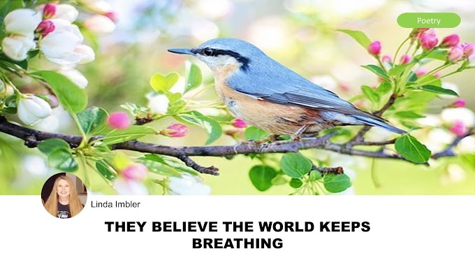 They Believe The World Keeps Breathing by Linda Imbler