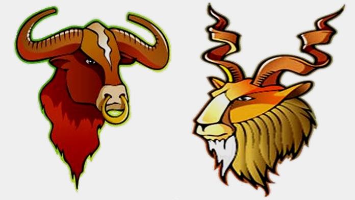 Compatibilità tra Toro e Capricorno