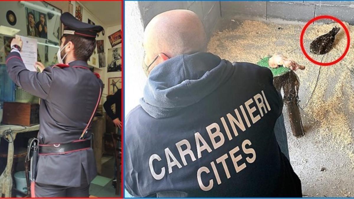 Carabinieri La Locandina San Cristoforo