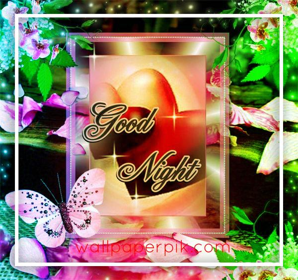 Rose Flower good night wallpaper HD download