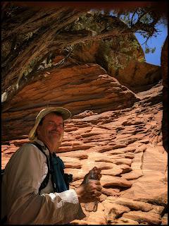 Interesting Layered Rock along the trail.