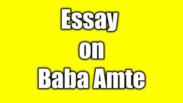 Essay on Baba Amte a Social worker