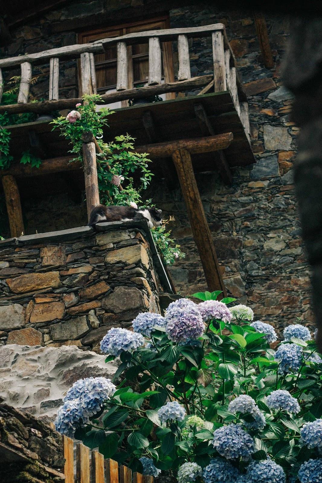 No dia 6 de julho fomos até à Serra da Lousã com o objetivo de explorar os caminhos pedestres, algumas das aldeias de xisto, estar em contacto com a natureza e, no fundo, conhecer a zona (que até então era para nós desconhecida). Este post está longe de ser um guia de viagem, nem foi planeado como tal — o intuito inicial era partilhar o meu novo vestido de verão, mas gostei tanto das fotografias que tirámos, que me pareceu um bom pretexto para falar da experiência.