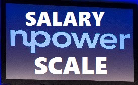 NPower 2017 Salary Structure | How Much N-power Pay Workers/Staffs