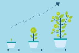Analisis Fundamental Saham: Bagaimana Mencari Perusahaan Bagus