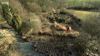 January in Carol Klein garden
