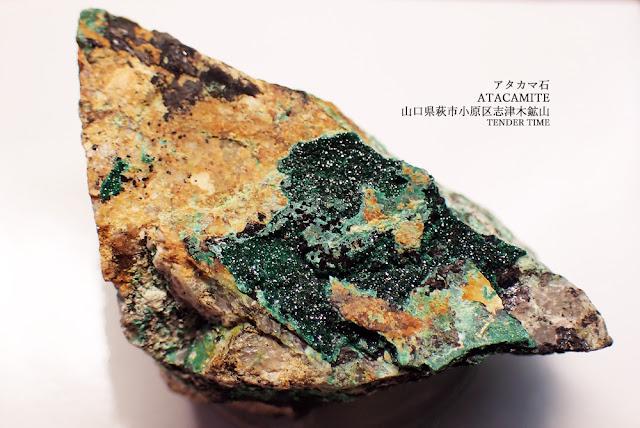 アタカマ石 ATACAMITE 山口県萩市小原区志津木鉱山