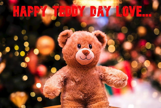 Happy Teddy Day Image For Facebook