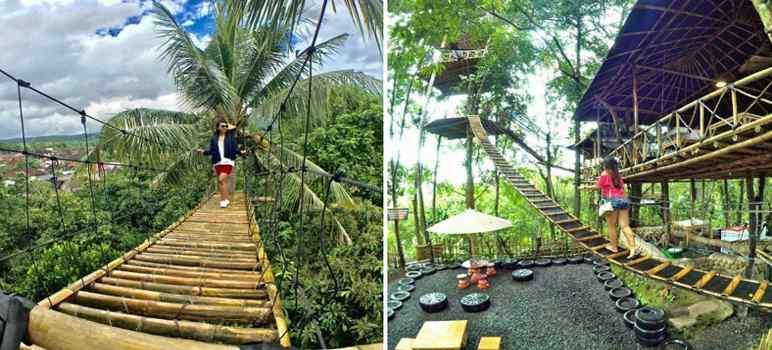 Eksotis Alam Di Rumah Pohon Temega Infodenpasar Com