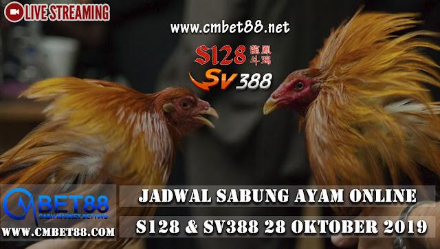 Jadwal Pertandingan Sabung Ayam