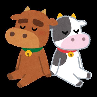 牛のカップルのイラスト(丑年)