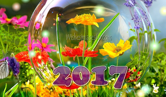 Happy New Year 2017 Full HD 4K Wallpapers Download