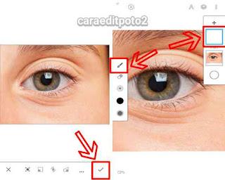 Membuat Mata Vector