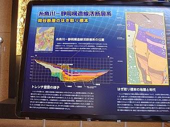岡谷断層の発掘断面図