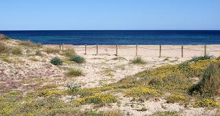 Parc natural de ses Salines d'Eivissa i Formentera per Teresa Grau Ros