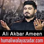 https://www.humaliwalayazadar.com/2015/04/ali-akbar-amin-nohay-2012-to-2016.html