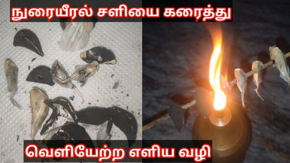 இந்த 3 முறை சாப்டா நுரையீரலில் உள்ள சளி கரைந்து வெளியேறும் !