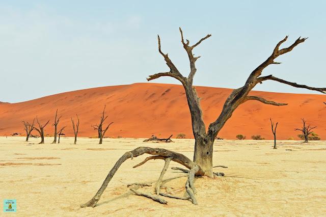 Desierto del Namib en Namibia