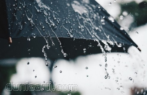 Mimpi Hujan