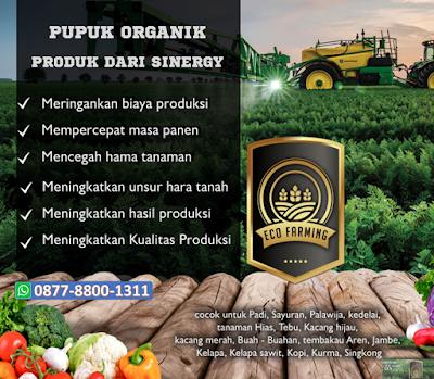 ECO FARMING - Pupuk Organik Super Aktif