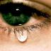 शोध में हुआ खुलासा: रोने से भी कम होता है मोटापा, लेकिन रोने का होना चाहिए सही समय