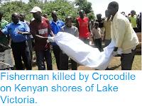 https://sciencythoughts.blogspot.com/2019/02/fisherman-killed-by-crocodile-on-kenyan.html