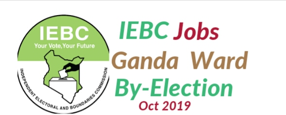 By-Election jobs 2019