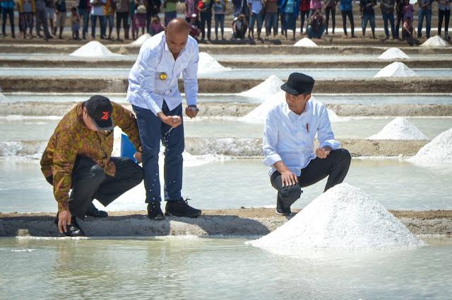 Dibandingkan Australia, Presiden Jokowi: Garam NTT Hasilnya Lebih Bagus, Lebih Putih