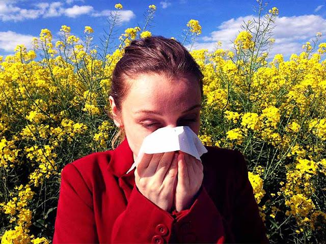 Tout ce qu'on doit connaitre sur les allergies saisonnières et comment les traiter