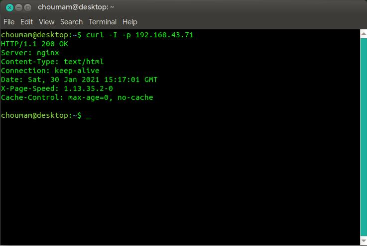 Hasil pengujian dari pemasangan EngineX dengan modul PageSpeed dengan cURL