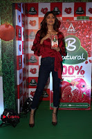 Bollywood Actress Shilpa Shetty Stills in Tight Jeans at Launch Of   0039.jpg