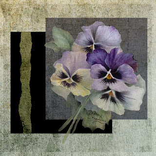 Pansies Squared by Jeanne Downing