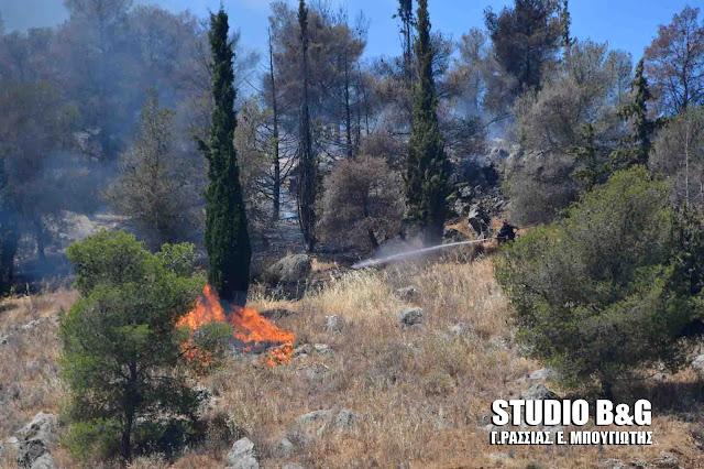 Αργολίδα: Πυρκαγιά στο λόφο Λάρισα στο Άργος