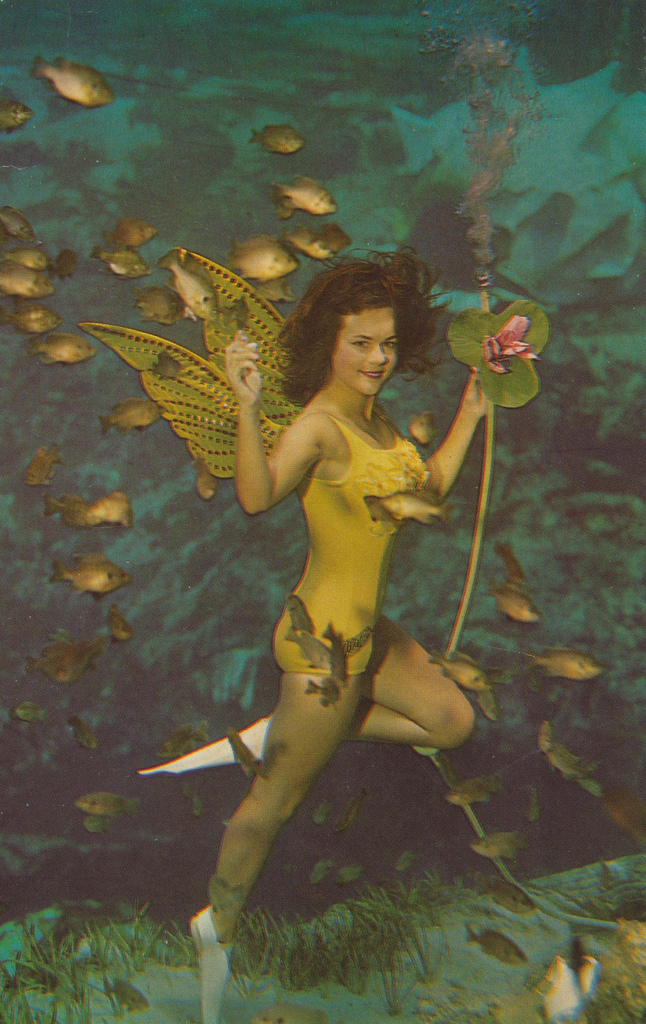 Floridas Weeki Wachee Spring Wonderful Color Photos Capture