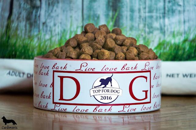 karma dla psów, jedzenie dla psów, sucha karma, najlepsza karma dla psów, dobra karma dla psów, welsh corgi, welsh corgi cardigan, corgi, czym karmić psa