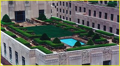 مشروع زراعة أسطح المنازل بالتفصيل وتحديد التكلفة والربح