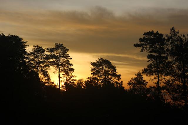 Menikmati Keindahan Sunrise di Paralayang Gunung Banyak Kota Batu