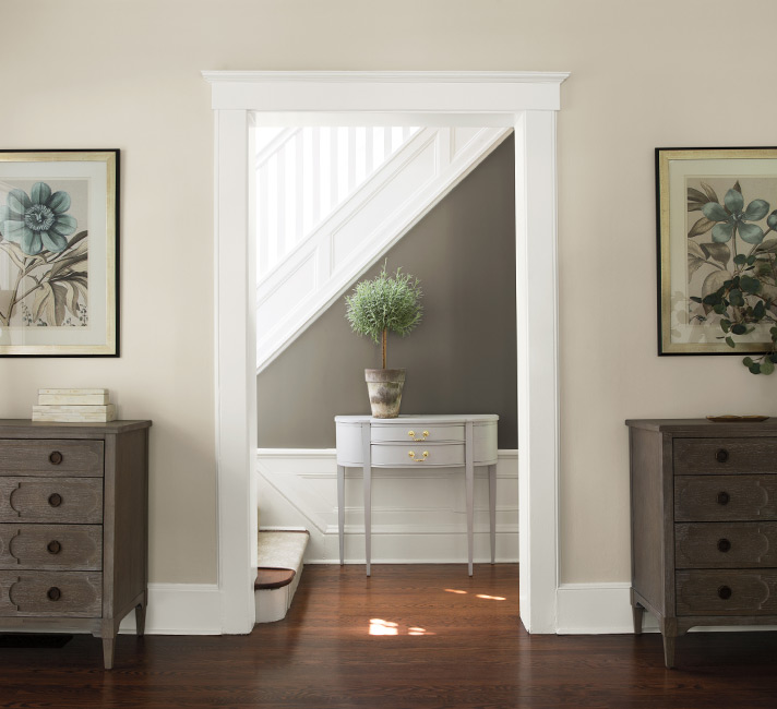 traditional entry painted with benjamin moore chelsea gray