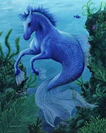 VOCÊ SABIA: cavalo marinho é o peixe mais romântico do mar?