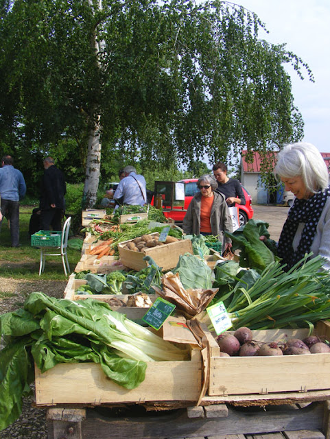 Buying organic vegetables on the farm, Indre et Loire, France. Photo by Loire Valley Time Travel.