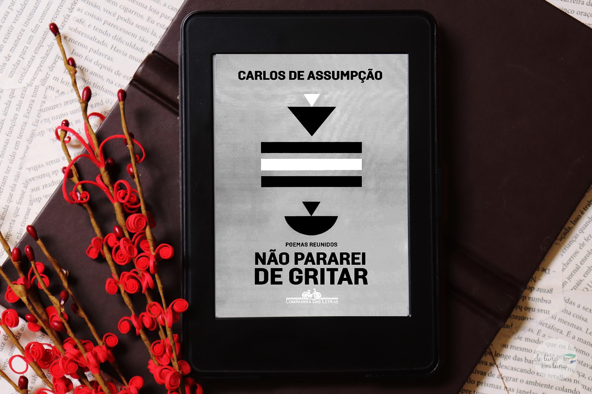 Não pararei de gritar - Carlos Assumpção