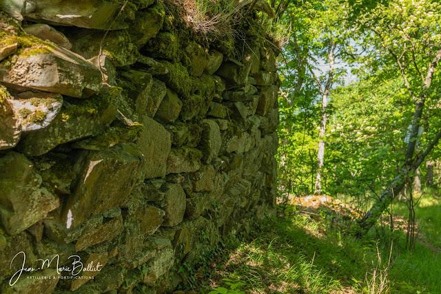 Burgthalschloss — Vestiges d'une tour