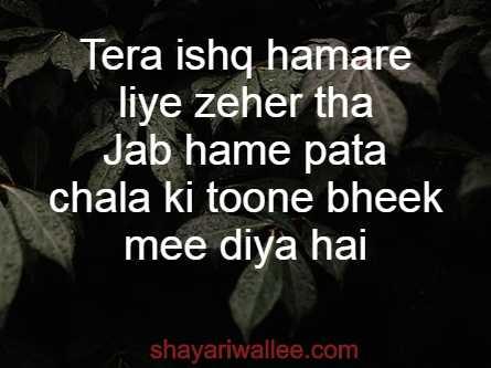 ishq 2 line shayari in hindi
