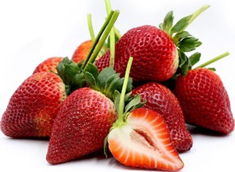 Bibit Strawberry giant kemasan 4 butir 11597 Kota Administrasi Jakarta Pusat