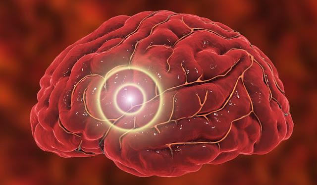 باحثون يطورن جهاز حوسبة جديد يشبه الدماغ يحاكي التعلم البشري