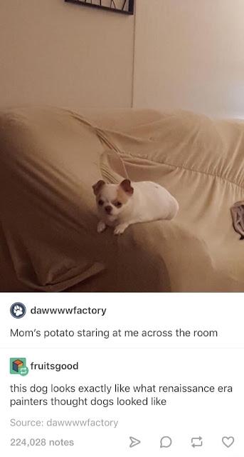 Pics And Memes