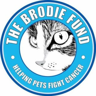 The Brodie Fund