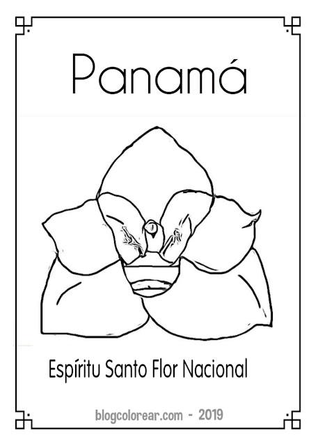 dibujo de la flor Nacional de Panamá para colorear